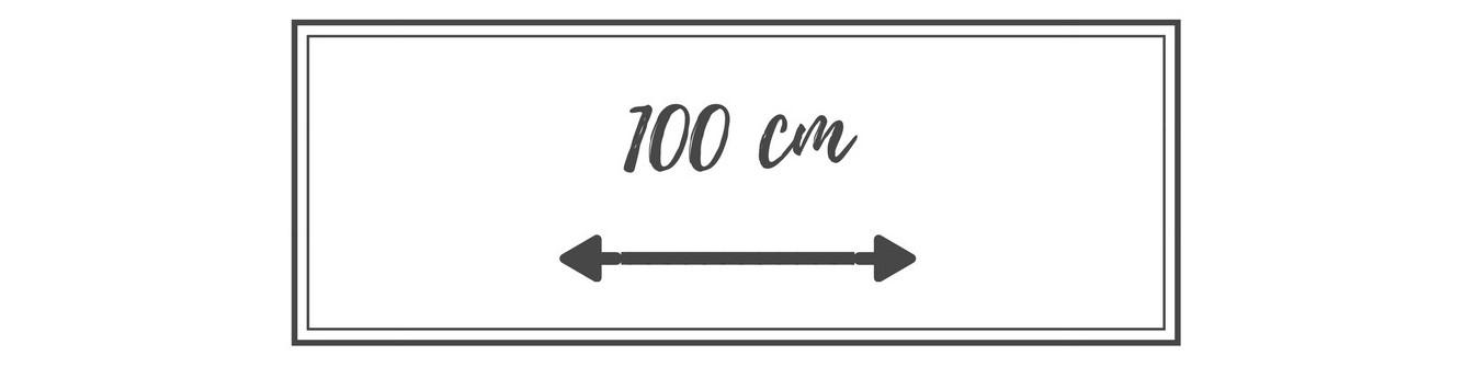 100 CM